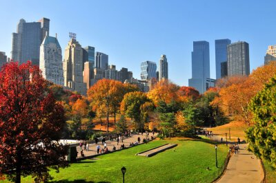 Image Autumn in the Central Park & NYC.