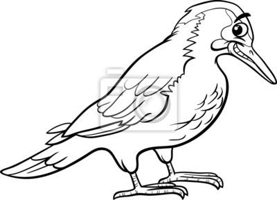 Coloriage Animaux Oiseaux.Yaffle Oiseau Coloriage Animaux Peintures Murales Tableaux