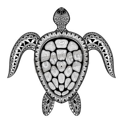 Zentangle Tortue Tribal Stylisee Main Dessine Vecteur Doodle