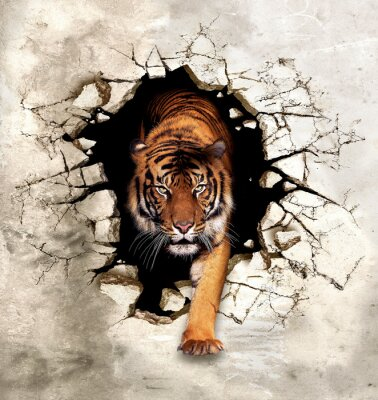 Papiers peints 3d picture tiger emerges from the destroyed wall