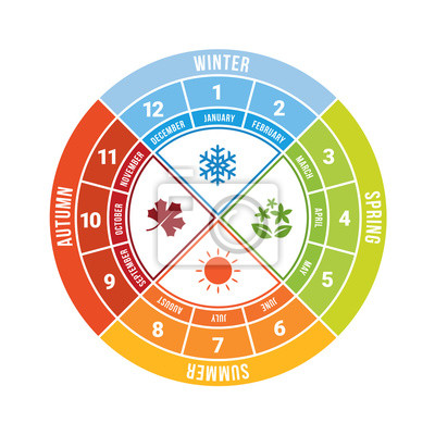 Papiers peints 4 season circle diagram chart with icon sign and month time vector design