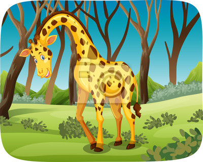 Papiers peints A giraffe in the forest