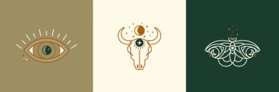 Papiers peints A set of mystical and esoteric logos in a trendy minimal linear style. Vector emblems butterfly, cow skull, eye, moon