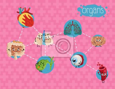 Affiche De Soins De Sante Avec Des Organes Humains Personnages