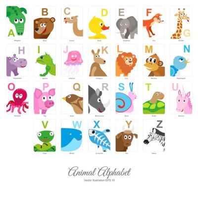 Papiers peints Alphabet animal plat