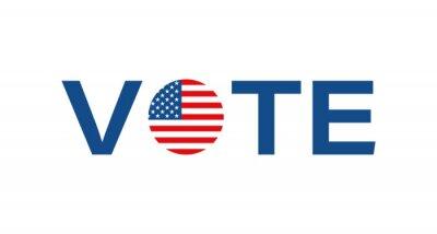 Papiers peints American vote vector icon. Political USA election campaign, logo