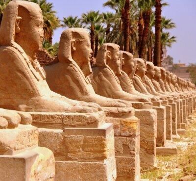 Papiers peints Amon Temple de Louxor
