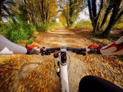 Papiers peints Andando en bicicletta en autunno en campagna. Pov originalmpoin de vue