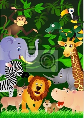 Animal Dans La Jungle Papier Peint Papiers Peints Autruche