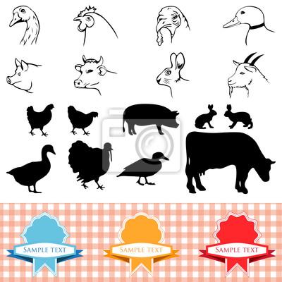 Animaux De La Ferme Cadre Vintage Etiquettes Illustration De