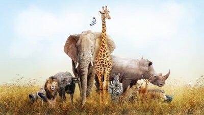 Papiers peints Animaux de safari en Afrique composite