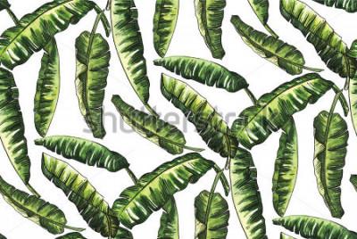 Papiers peints aquarelle de feuilles vertes de banane avec ligne motif doodle même moins de papier peint fashion vintage hawaii sur fond blanc