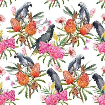 Papiers peints Aquarelle motif australien tropical