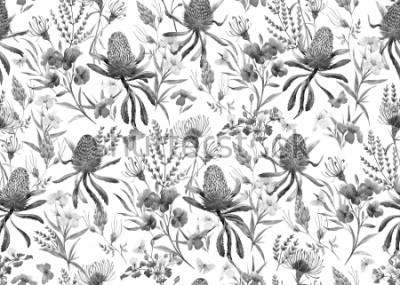 Papiers peints Aquarelle motif tropical, fleurs, orange banksias, rose laurier, fleurs exotiques australiennes, fleurs rouges Eremophila dichroantha. motif noir et blanc monochrome