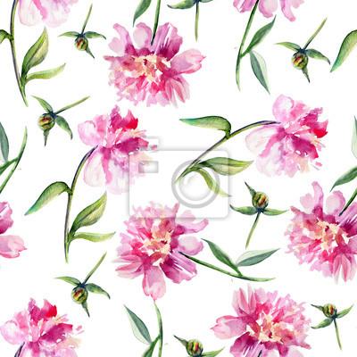 aquarelle rose pivoine jardin fleur isol sur blanc. Black Bedroom Furniture Sets. Home Design Ideas