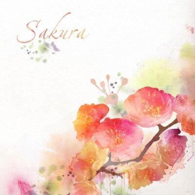 Aquarelle, sakura