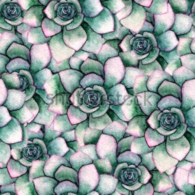 Papiers peints Aquarelle transparente motif botanique avec des plantes succulentes