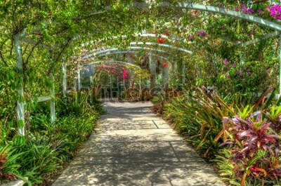 Papiers peints Arc couvert de fleurs colorées lumineuses au jardin botanique à Naples FL