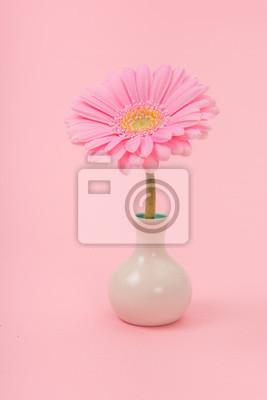 Assez, doux, rose, gerber, marguerite, fleur, petit, blanc, vase, rose, fond