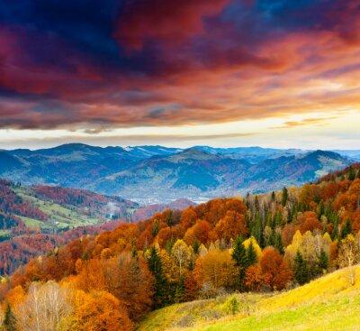 Papiers peints automne