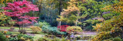 Papiers peints Automne, japonais, Parc, panorama