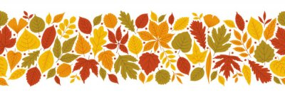 Papiers peints Autumn bright background with varied leaves in red, green, yellow, orange tones. Colorful fall ornament, the seamless motif on white. Banner template, vector illustration for websites, print, etc.