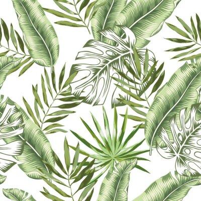 Papiers peints Banane verte, feuilles de palmier monstera avec fond blanc. Modèle sans couture de vecteur. Illustration de feuillage de jungle tropicale. Plante exotique végétale. Design floral de plage d'été. Natur