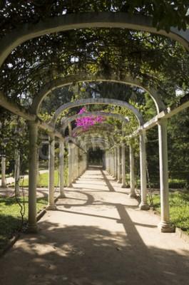 Papiers peints Beau, arqué, pergola, infinie, sentier, botanique, jardin, Rio, Janeiro, Brésil