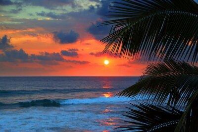 Papiers peints beau coucher de soleil sur la mer et feuilles de palmier