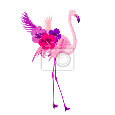Beau flamant rose, isolé sur blanc papier peint • papiers peints ...