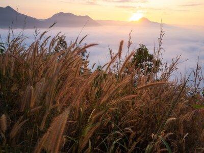 Papiers peints Beau paysage beaucoup de brouillard Phu Thok