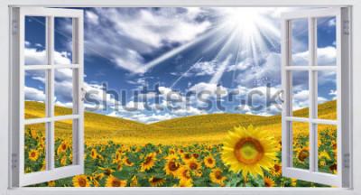 Papiers peints Beau paysage d'été, vue de la fenêtre