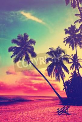 Papiers peints Beau, tropical, plage, silhouettes, paume, Arbres, Coucher soleil