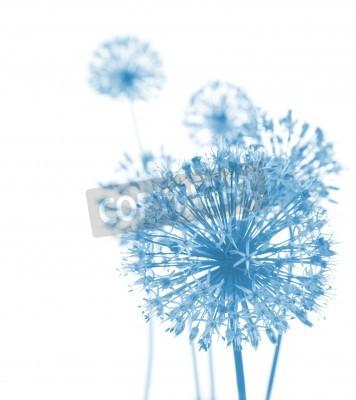 Papiers peints Beautiful Blue Fleurs / composition abstraite sur fond blanc