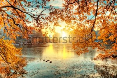 Papiers peints Beaux arbres colorés avec lac en automne, photographie de paysage. Fin de l'automne et début de l'hiver. Plein air et nature.