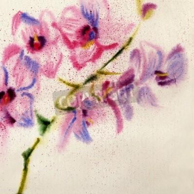 Papiers peints Belle orchidée aquarelle
