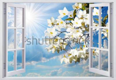 Papiers peints Belle vue depuis la fenêtre
