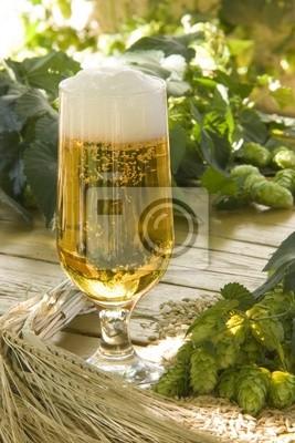 Bier und mit Hopfen Gerste