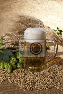 bière avec de l'orge et houblon