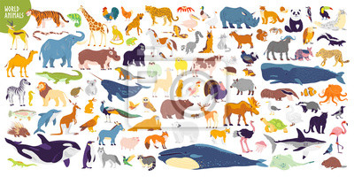 Papiers peints Big vector set of different world wild animals, mammals, fish, reptiles and birds. Rare animals. Funny flat characters, good for banners, prints, patterns, infographics, children book illustration etc