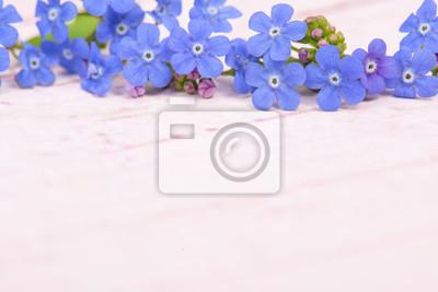Bleu, oublier, moi, pas, fleurs, sommet, image, pastel, rose, bois, fond, espace, texte