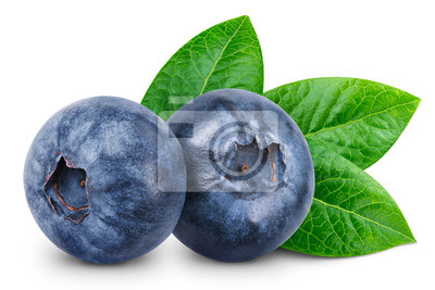 Papiers peints Blueberry isolated Clipping Path