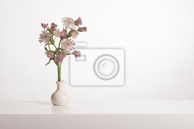 Bouquet de fleurs de grand maître dans un vase blanc dans un intérieur blanc avec espace de copie