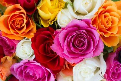 Papiers peints bouquet de roses fraîches