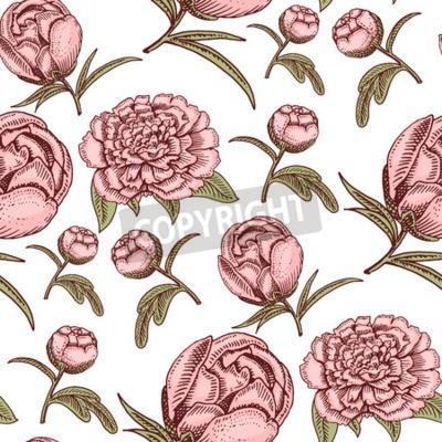 Papiers peints Bouquet vintage hand drawn style flowers bud wedding bloom elegant birthday nature design romantic flora blossom seamless pattern background vector illustration.