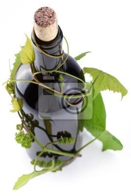 Papiers peints: Bouteille de vin dans la vigne sur un fond blanc