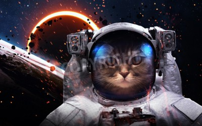 Papiers peints Brave cat astronaut at the spacewalk. This image elements furnished by NASA
