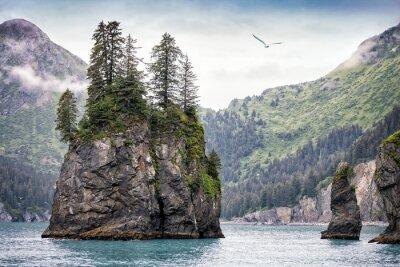 Papiers peints Brumeux, jour, Kenai, fjords, national, Parc, Alaska, USA