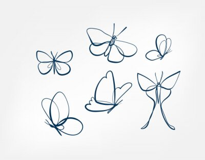 Papiers peints butterfly insect vector art line isolated doodle illustration