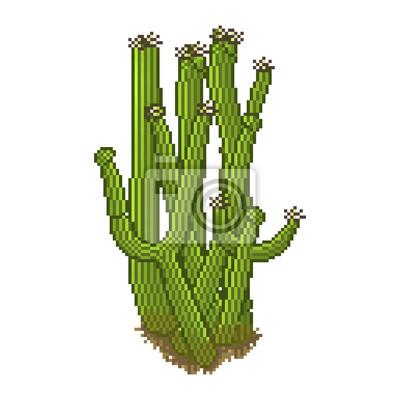 Cactus vecteur pixel de style
